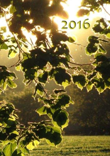 9781514329108: dicker TageBuch Kalender 2016 - Blätter in der Abendsonne: DIN A4 - 1 Tag pro Seite (German Edition)