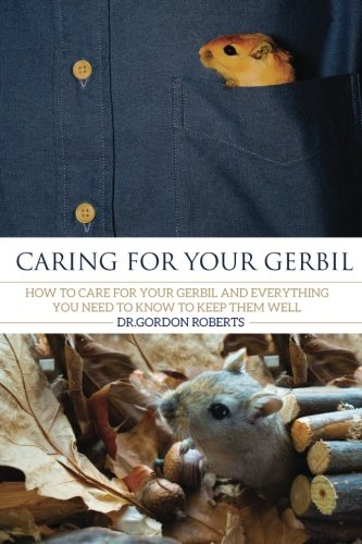 Caring for your Gerbil: How To Care For Your Gerbil and Everything You Need To Know To Keep Them ...