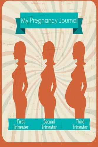 9781514875698: My Pregnancy Journal: My Pregnancy Stages, 6 x 9, Nine Month Daily Journal
