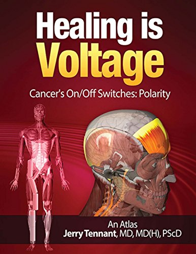 9781515055556: Healing is Voltage: Cancer's On/Off Switches: Polarity