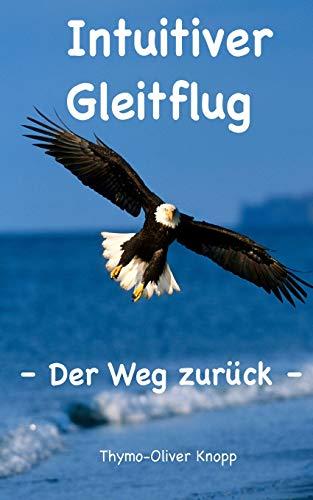 9781515213642: Intuitiver Gleitflug: Der Weg zurück (German Edition)