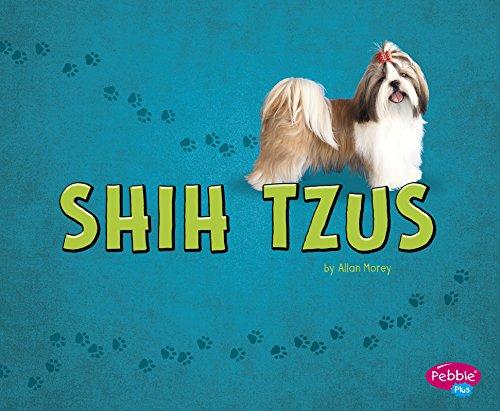 Shih Tzus (Hardback): Allan Morey