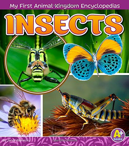 9781515739364: INSECTS (A+ Books)