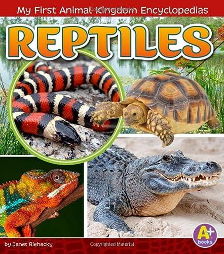 9781515739395: Reptiles (My First Animal Kingdom Encyclopedias)