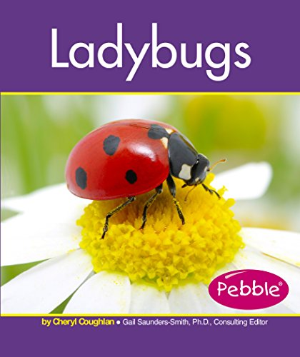 9781515742272: Ladybugs (Insects)