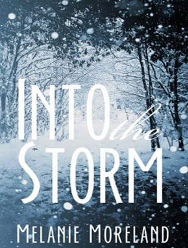 9781515912088: Into The Storm