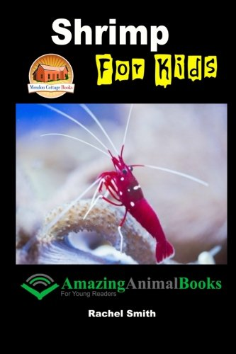 9781517074616: Shrimp For Kids