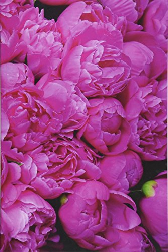 9781517231521: Peony Journal: 160 Page Lined Journal/Notebook