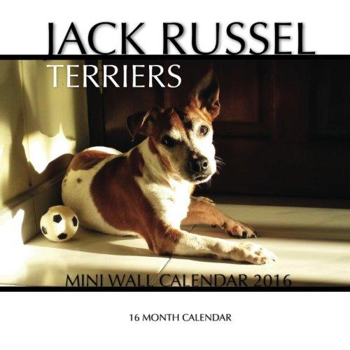 9781517292560: Jack Russel Terriers Mini Wall Calendar 2016: 16 Month Calendar