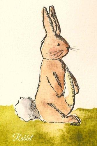 9781517311773: Rabbit
