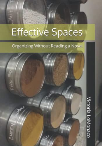 9781517392888: Effective Spaces: Organizing Without Reading a Novel