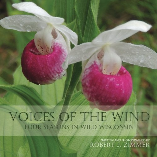 9781517458027: Voices of the Wind: Four Seasons in Wild Wisconsin