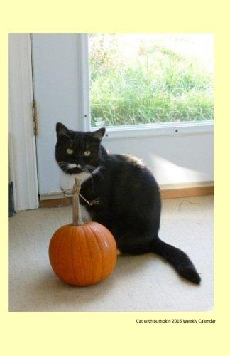 9781517522841: Cat with pumpkin 2016 Weekly Calendar: Cat with pumpkin 2016 Weekly Calendar
