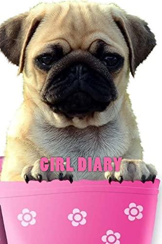 9781517531645: Girl Diary