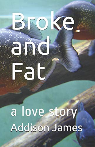 9781517610623: Broke and Fat: a love story