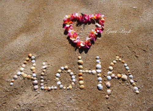 Guest Book Hawaiian (Hawaiian Blank Pages Edition): Classic Hawaiian Option - ON SALE NOW - JUST ...