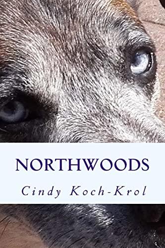 9781517757335: Northwoods (Volume 1)