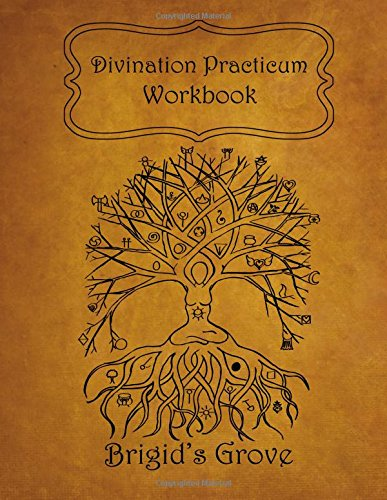 9781517783549: Divination Practicum Workbook
