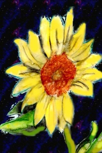 9781517794064: The Daily Practice Journal: Sunflower