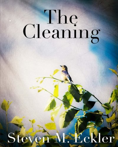 9781517799434: The Cleaning