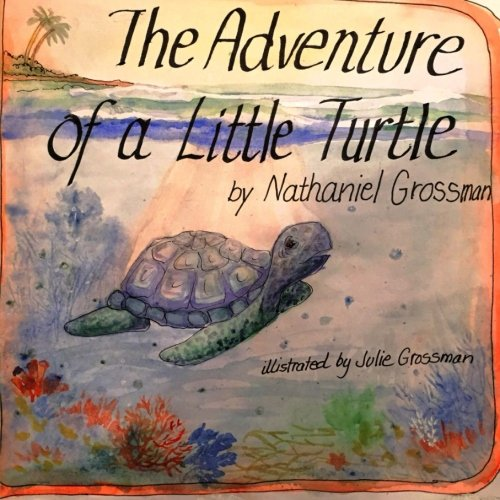 9781518754500: The Adventure of a Little Turtle