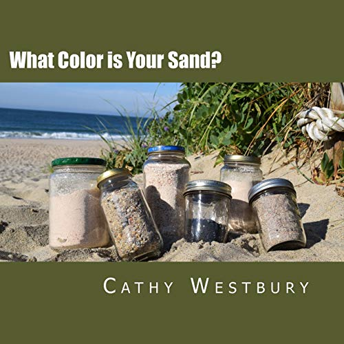 9781518886355: What Color is Your Sand?