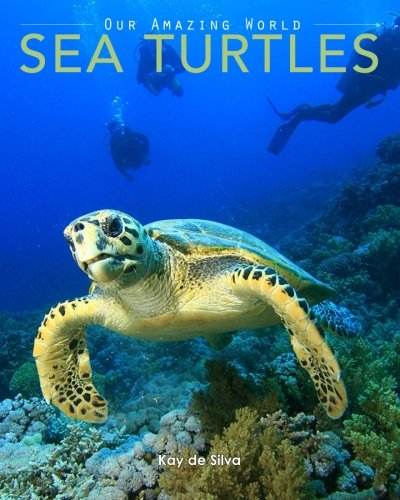9781519103130: Sea Turtles: Amazing Pictures & Fun Facts on Animals in Nature (Our Amazing World Series) (Volume 4)
