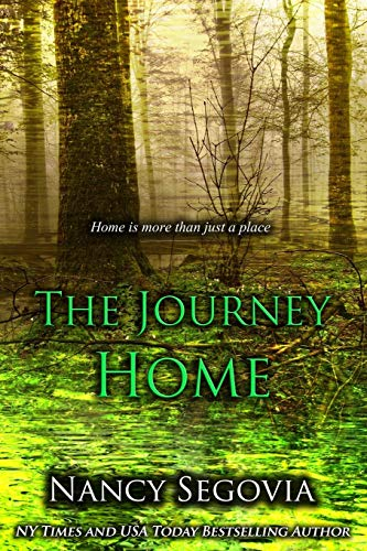 9781519160478: The Journey Home: Sometimes Home is More Than Just A Place