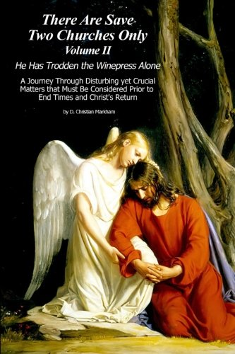 9781519199928: There Are Save Two Churches Only, Volume II: He Has Trodden the Winepress Alone