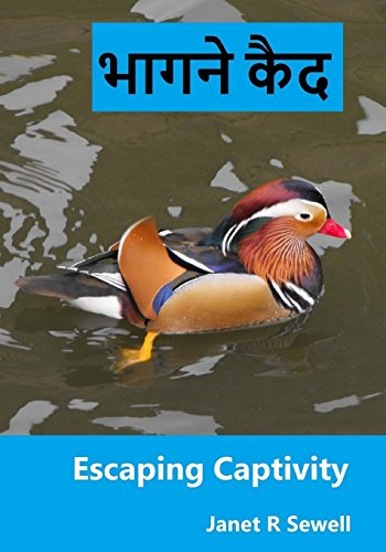 9781519293992: Escaping Captivity: A Simple Guide to Becoming Whole in Christ (Hindi Edition)