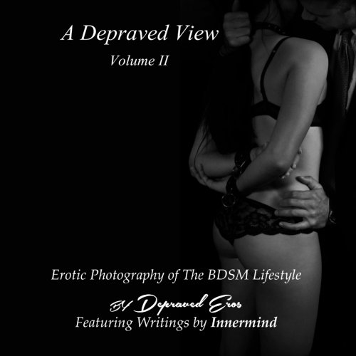 9781519419231: A Depraved View Volume II
