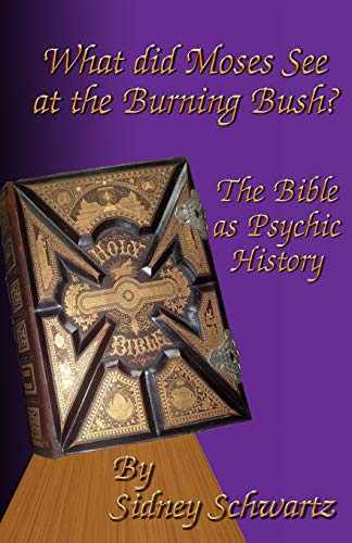 9781519539885: What Did Moses See at the Burning Bush?: The Bible as Psychic History (Volume 3)