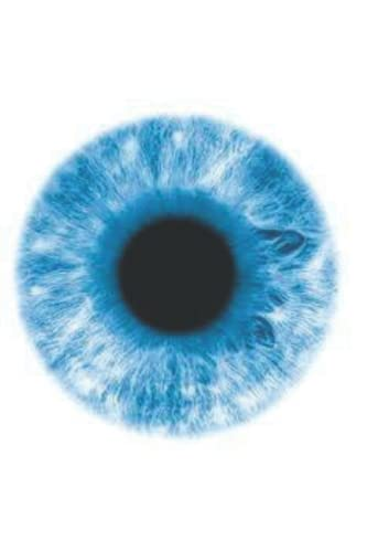 9781519557988: We Are The American Zombies: blue