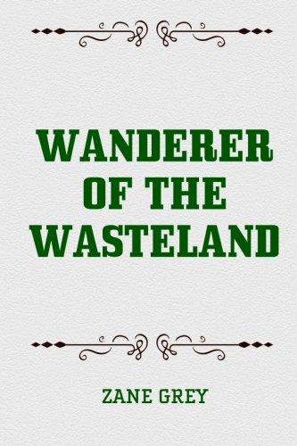 9781519575883: Wanderer of the Wasteland
