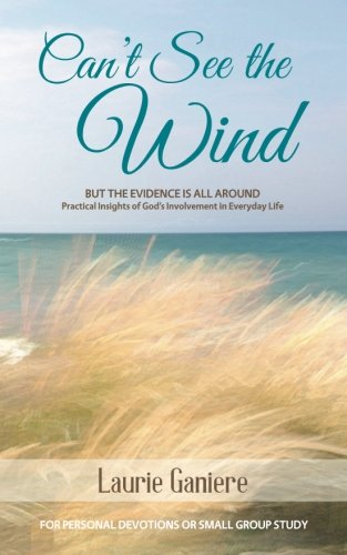 9781519674760: Can't See the Wind: But the Evidence is All Around - Practical Insights of God's Involvement in Everyday Life