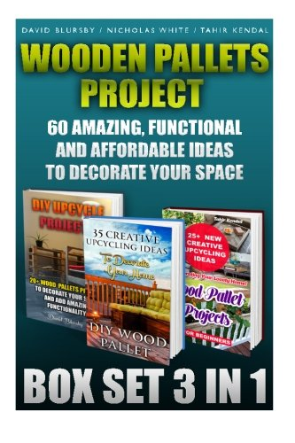 Wooden Pallets Project Box Set 3 in: David Blursby, Professor