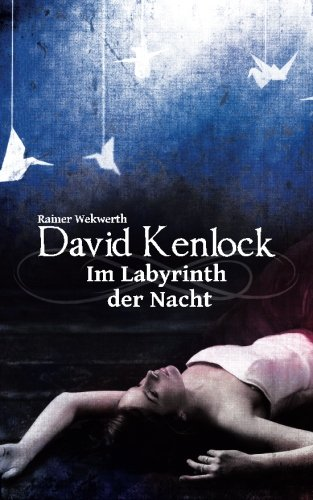 9781519738233: Im Labyrinth der Nacht (German Edition)