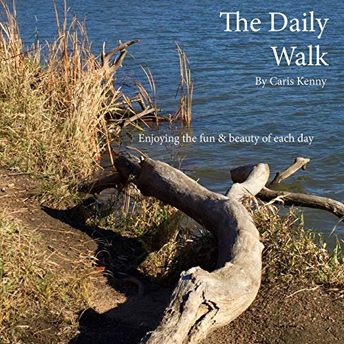 9781519751973: The Daily Walk: Simply Enjoying the Fun & Beauty of Each Day