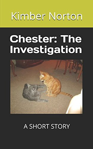 9781520688664: Chester: The Investigation
