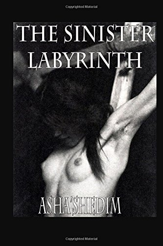 9781522865834: The Sinister Labyrinth