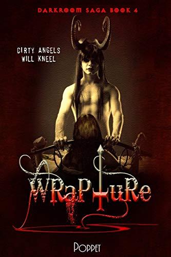 9781522910718: Wrapture (Darkroom Saga) (Volume 4)