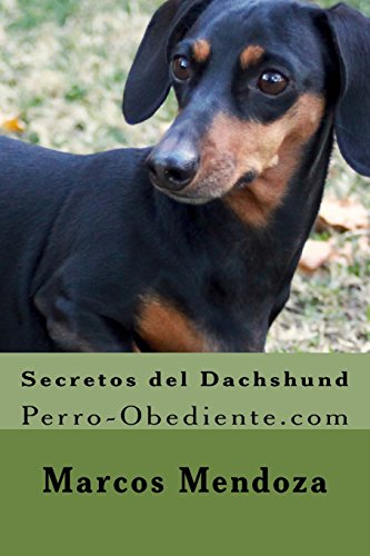 9781523315086: Secretos del Dachshund: Perro-Obediente.com (Spanish Edition)