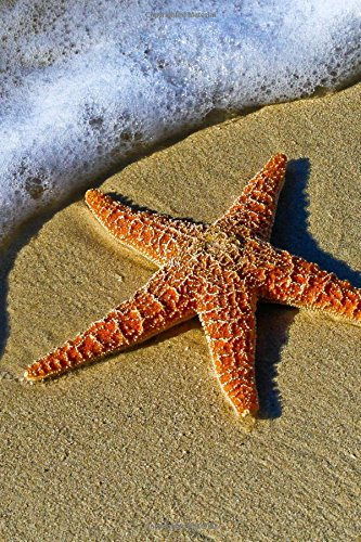9781523382477: The Starfish Journal: 150 page lined notebook/diary
