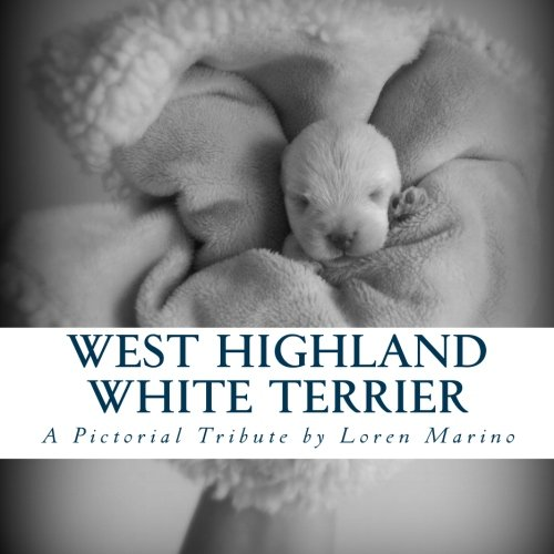 West Highland White Terrier: A Pictorial Tribute: Marino, Loren
