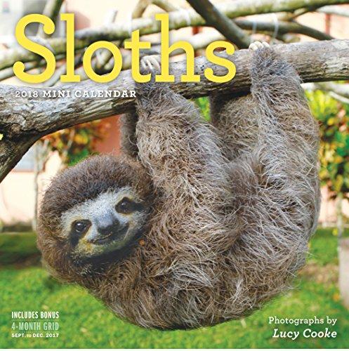 Sloths Mini Wall Calendar 2018