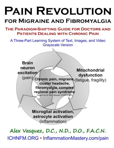 9781523909063: Pain Revolution for Migraine and Fibromyalgia (Discounted Printing): The Paradigm-Shifting Guide for Doctors and Patients Dealing with Chronic Pain (Inflammation Mastery & Functional Inflammology)