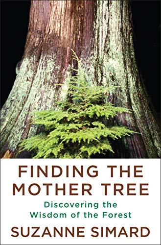 9781524712013: Finding the Mother Tree: Discovering the Wisdom of the Forest