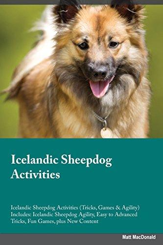 9781526903709: Icelandic Sheepdog Activities Icelandic Sheepdog Activities (Tricks, Games & Agility) Includes: Icelandic Sheepdog Agility, Easy to Advanced Tricks, Fun Games, plus New Content