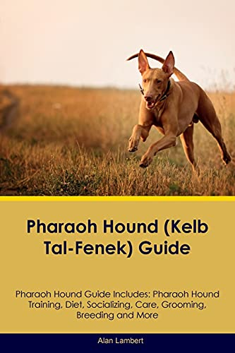 9781526908032: Pharaoh Hound (Kelb Tal-Fenek) Guide Pharaoh Hound Guide Includes: Pharaoh Hound Training, Diet, Socializing, Care, Grooming, Breeding and More