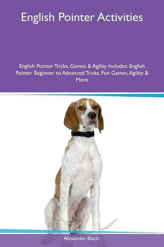 English Pointer Activities English Pointer Tricks, Games & Agility Includes: English Pointer ...